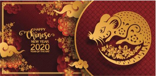 Le nouvel an Chinois - Terres de Chine