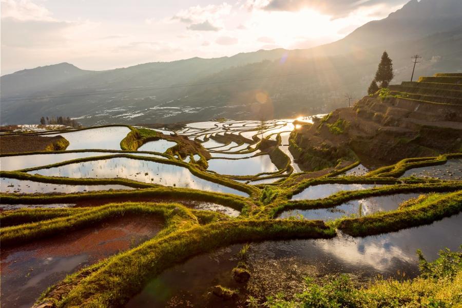 Les 3 plus belles rizières de Chine