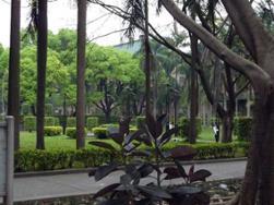 Université Sun Yat-Sen et fast-food
