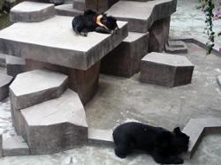 Zoo de Guangzhou