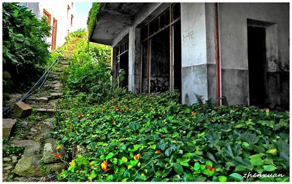 Un village chinois abandonné s'offre à la nature
