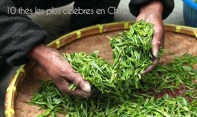 Les 10 thés les plus célèbres de Chine