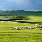 Mongolie Interieure