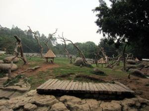 Singes Safari Park Guangzhou