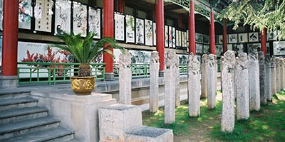 Musée de la forêt des stèles