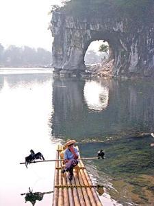 Pêcheur et ses cormorans sur la rivière Li
