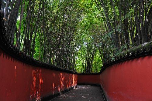 Allée temple Wuhou