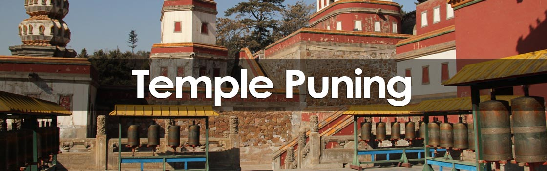 Temple Puning
